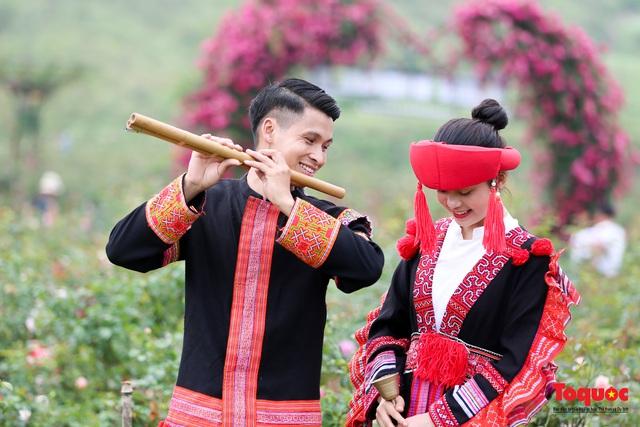 Ngắm thung lũng hoa hồng tuyệt đẹp nhận kỷ lục lớn nhất Việt Nam - Ảnh 22.