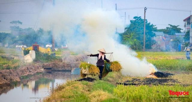 Nông dân lại đốt rơm rạ, khói bụi đang bủa vây ngoại thành Hà Nội - Ảnh 2.