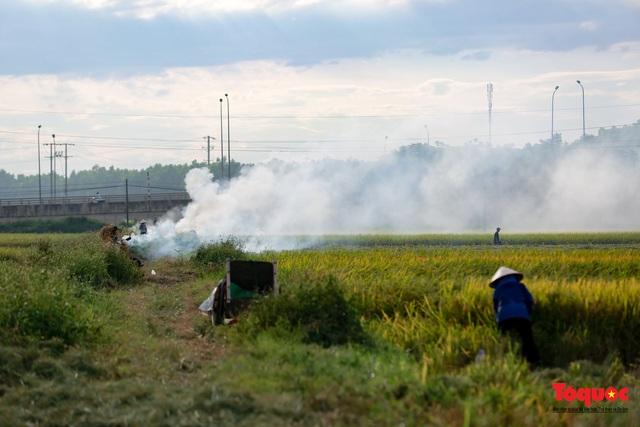 Nông dân lại đốt rơm rạ, khói bụi đang bủa vây ngoại thành Hà Nội - Ảnh 4.