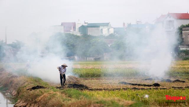 Nông dân lại đốt rơm rạ, khói bụi đang bủa vây ngoại thành Hà Nội - Ảnh 3.
