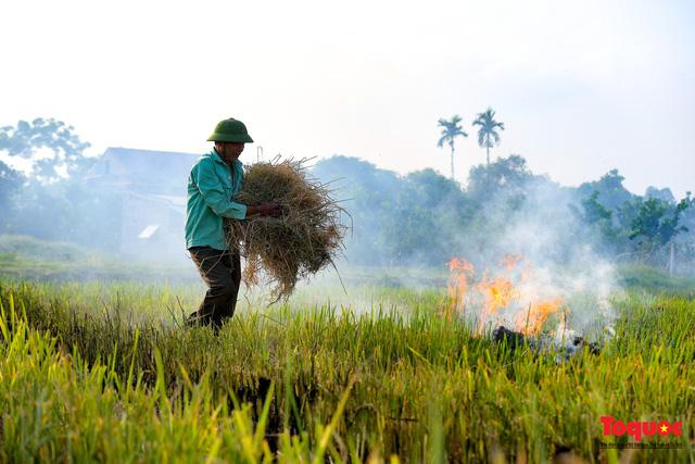 Nông dân lại đốt rơm rạ, khói bụi đang bủa vây ngoại thành Hà Nội - Ảnh 7.