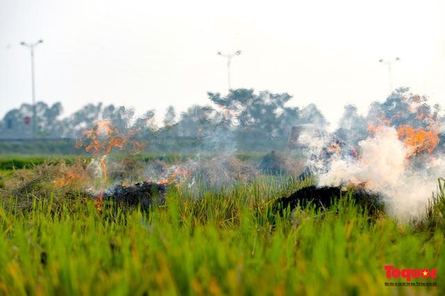 Nông dân lại đốt rơm rạ, khói bụi đang bủa vây ngoại thành Hà Nội - Ảnh 6.