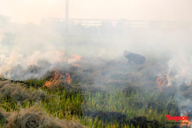 Nông dân lại đốt rơm rạ, khói bụi đang bủa vây ngoại thành Hà Nội - Ảnh 5.