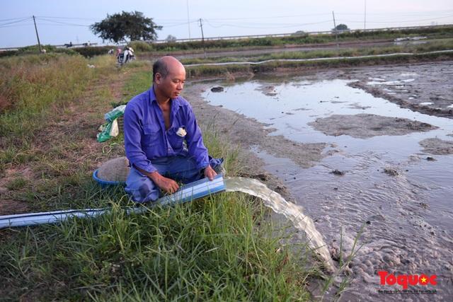 Hà Nội: Nắng nóng hơn 40 độ C, người nông dân soi đèn cấy lúa từ 3h sáng - Ảnh 8.