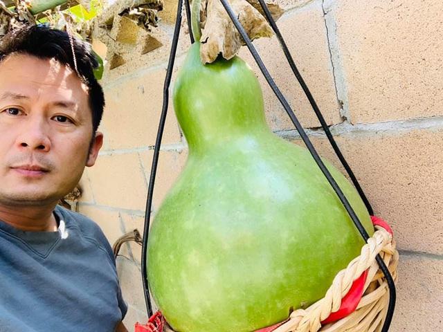 """Bằng Kiều khoe trái cây thu hoạch toàn quả """"khủng"""" - Ảnh 1."""