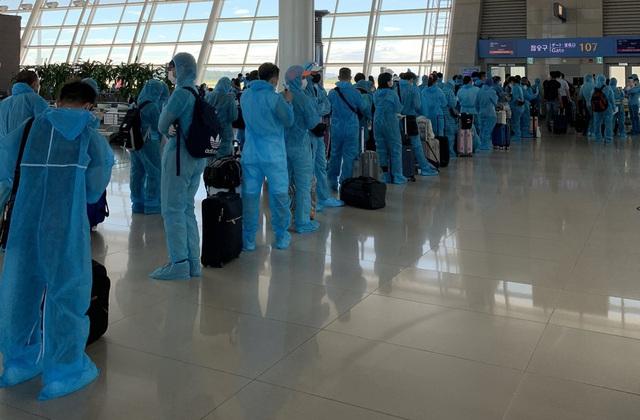 Đưa hơn 300 công dân từ Hàn Quốc về Nội Bài, tất cả được cách ly tập trung  - Ảnh 1.