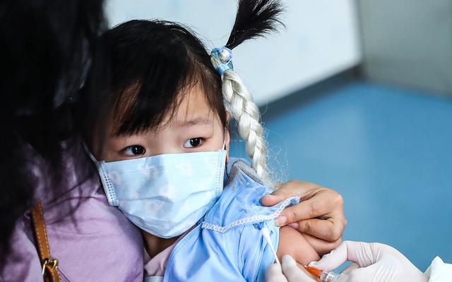 """Bệnh bạch hầu """"hoành hành"""", Bộ trưởng Giáo dục chỉ đạo tăng cường công tác phòng, chống bệnh trong trường học - Ảnh 1."""