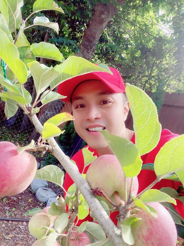 Trái cây sum xuê vườn nhà Nhật Tinh Anh đẹp như resort - Ảnh 3.