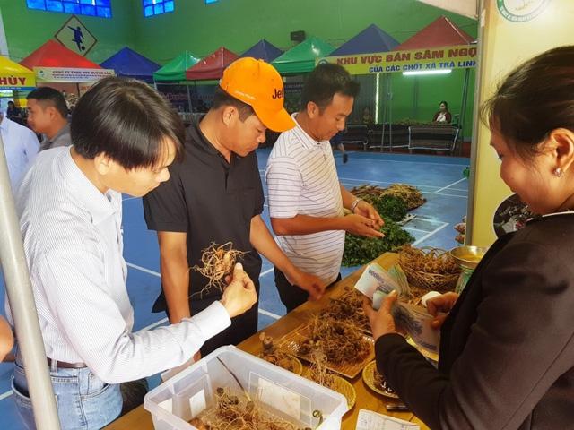 Phiên chợ Sâm Ngọc Linh nổi tiếng chuyển qua bán online vì dịch Covid-19 - Ảnh 1.