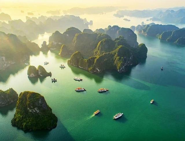 Tổ chức cuộc thi ảnh Việt Nam 2020 - Ảnh 1.