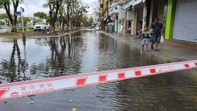 Nhiều tuyến đường ở Đà Nẵng ngập sâu, cây xanh ngã đổ - Ảnh 8.
