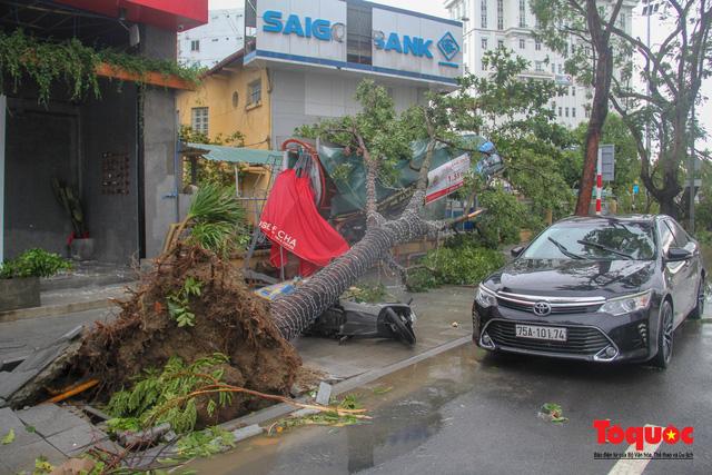 Gió to, mưa lớn, nhiều cây xanh tại TP Huế ngã đổ do bão số 5 - Ảnh 10.