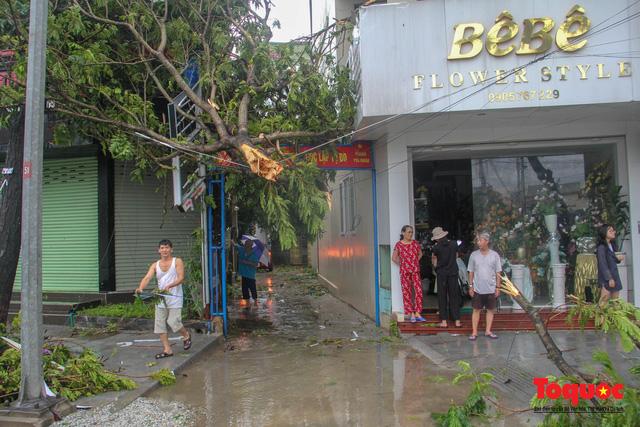 Gió to, mưa lớn, nhiều cây xanh tại TP Huế ngã đổ do bão số 5 - Ảnh 13.