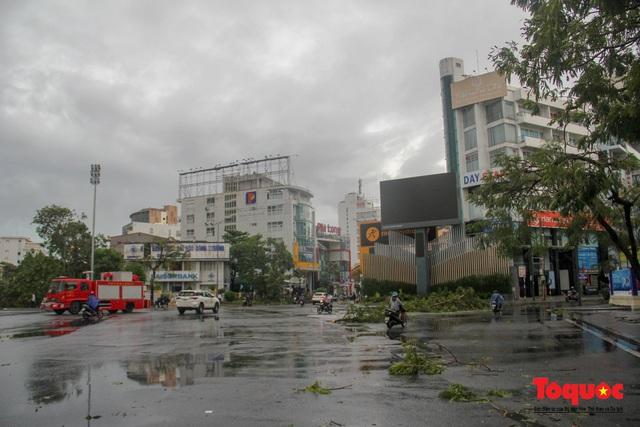 Gió to, mưa lớn, nhiều cây xanh tại TP Huế ngã đổ do bão số 5 - Ảnh 2.