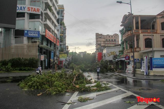 Gió to, mưa lớn, nhiều cây xanh tại TP Huế ngã đổ do bão số 5 - Ảnh 6.