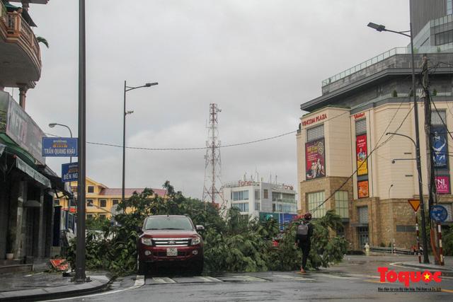 Gió to, mưa lớn, nhiều cây xanh tại TP Huế ngã đổ do bão số 5 - Ảnh 5.