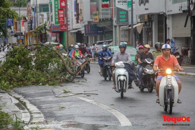 Gió to, mưa lớn, nhiều cây xanh tại TP Huế ngã đổ do bão số 5 - Ảnh 7.