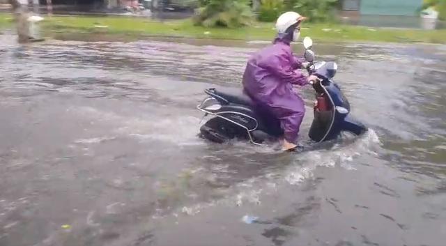 Nhiều tuyến đường ở Đà Nẵng ngập sâu, cây xanh ngã đổ - Ảnh 2.