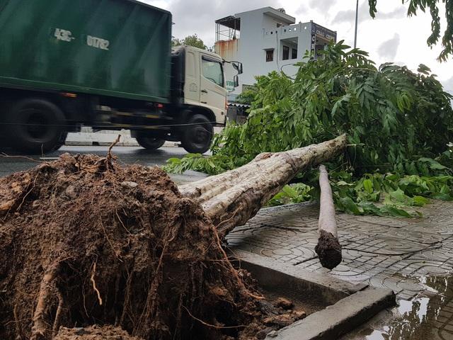 Nhiều tuyến đường ở Đà Nẵng ngập sâu, cây xanh ngã đổ - Ảnh 12.