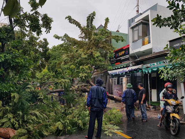 Nhiều tuyến đường ở Đà Nẵng ngập sâu, cây xanh ngã đổ - Ảnh 13.