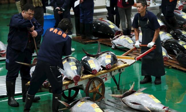 Chợ cá nổi tiếng nhất Tokyo mở lại cửa đón khách - Ảnh 1.