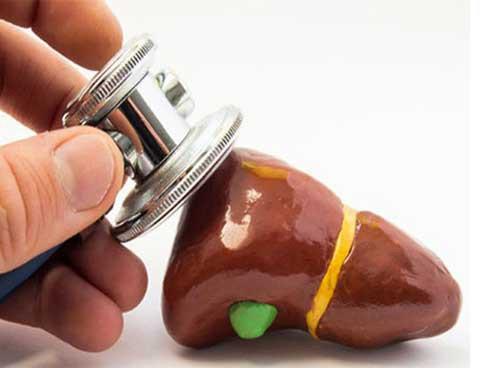 Những người dễ bị mệt mỏi là do gan không khỏe: Đây là những điều bạn nên làm để cứu gan - Ảnh 1.