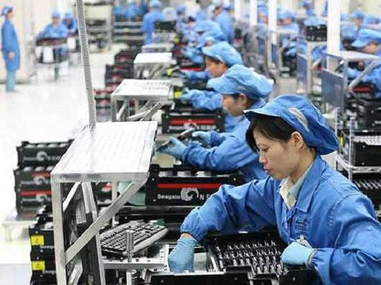 Bốn công ty xuất khẩu lao động nhận tráp phạt hơn 500 triệu đồng - Ảnh 1.