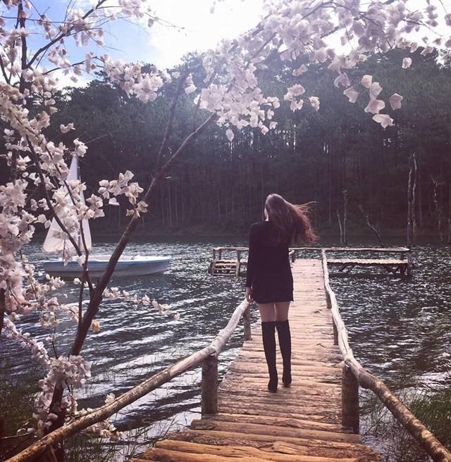 secret-garden-thien-duong-song-ao-moi-toanh-dang-hot-ran-ran-o-da-lat-e498664e636219911960585677