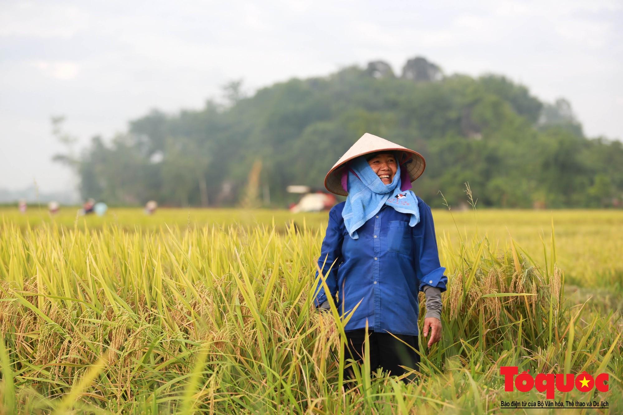 Bộ trưởng Nguyễn Xuân Cường: Nhìn lại thành quả vượt bậc của nông nghiệp Việt Nam với những con số ấn tượng nhất  - Ảnh 5.