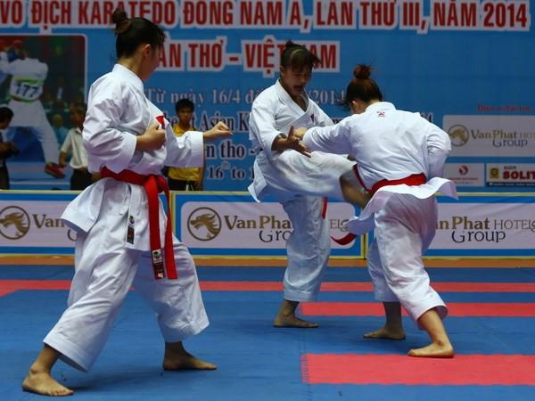 Cần Thơ đăng cai Giải Vô địch Karate châu Á năm  2019 - Ảnh 1.
