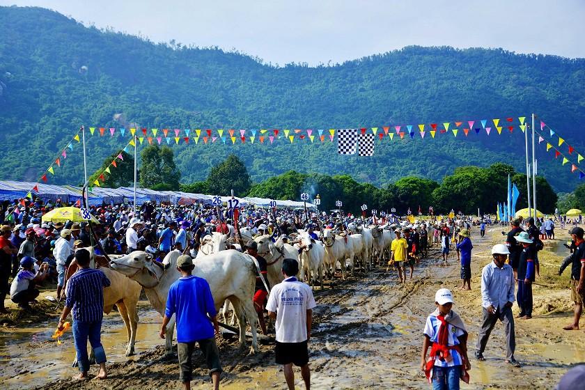 Tưng bừng Lễ hội đua bò Bảy Núi cùng Number 1 Cola - Ảnh 1.