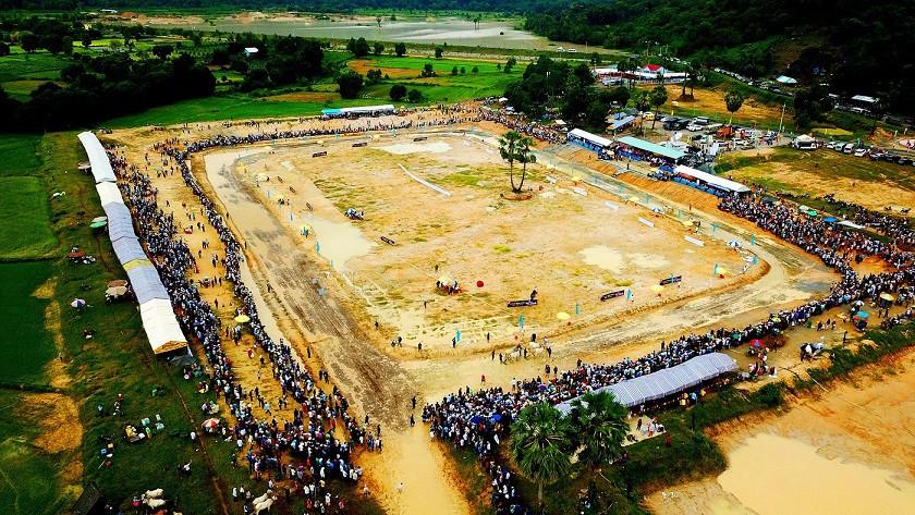 Tưng bừng Lễ hội đua bò Bảy Núi cùng Number 1 Cola - Ảnh 6.