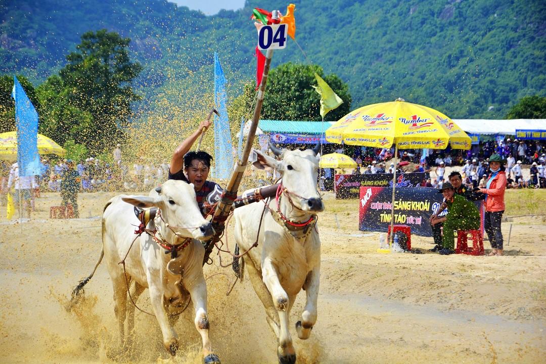 Tưng bừng Lễ hội đua bò Bảy Núi cùng Number 1 Cola - Ảnh 7.