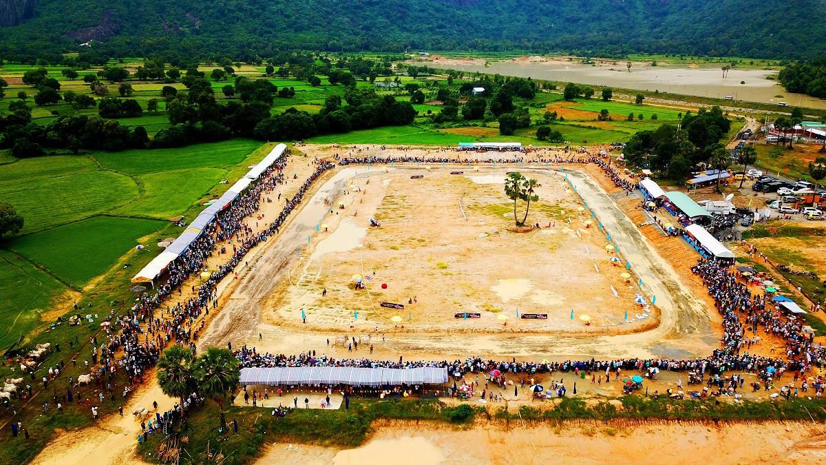 Tưng bừng Lễ hội đua bò Bảy Núi cùng Number 1 Cola - Ảnh 8.