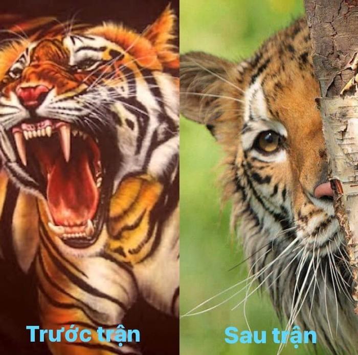 Chiến thắng của ĐT Việt Nam và cầu thủ Malaysia bỗng trở thành ảnh chế siêu hot trên mạng xã hội - Ảnh 11.