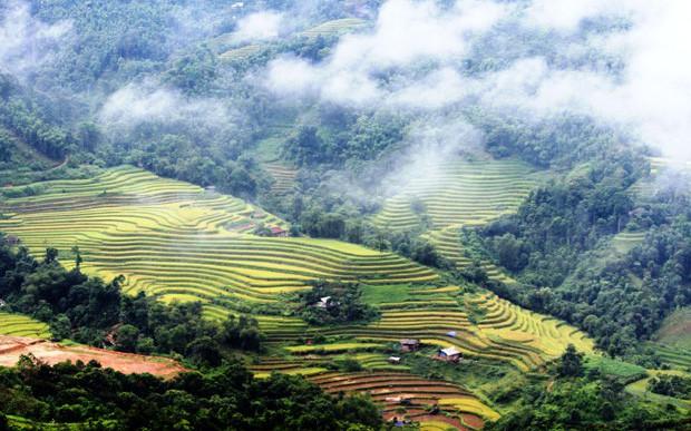 Hoàng Su Phì xây dựng thương hiệu du lịch gắn với di sản ruộng bậc thang