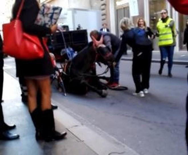 Kiến nghị cấm xe du lịch ở Rome sau khi ngựa ngã gục trên đường phố - Ảnh 2.
