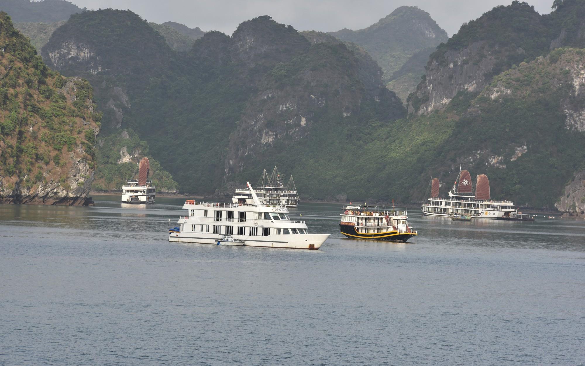 Xin ý kiến cho Dự thảo đề án điều chỉnh tăng mức thu phí tham quan Vịnh Hạ Long