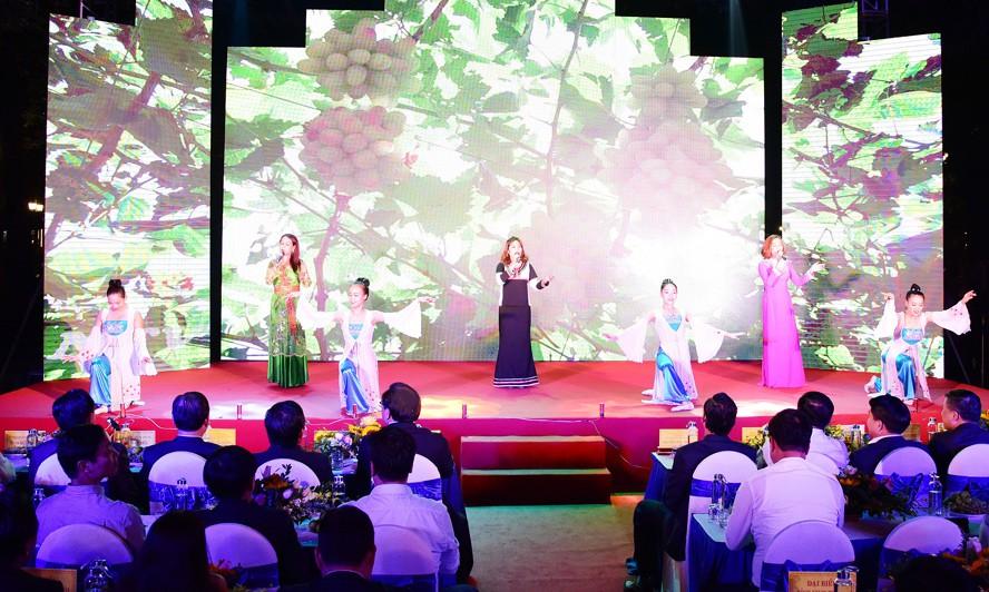 Khám phá Ngày Văn hóa, Du lịch Ninh Thuận giữa lòng Hà Nội - Ảnh 2.