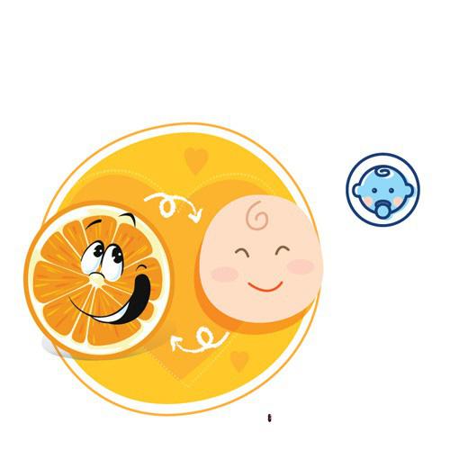 Mang thai tháng thứ 4: Mẹ bầu đang tận hưởng những ngày dễ chịu nhất của thai kỳ - Ảnh 3.