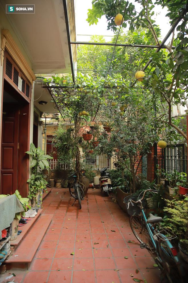 Ngôi nhà bình yên, rợp bóng cây của nghệ sĩ xuất hiện trên ảnh thờ nhiều nhất Việt Nam - Ảnh 7.