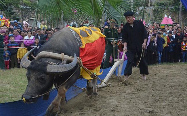 Tuyên Quang: Tưng bừng lễ hội Lồng Tông xuân Kỷ Hợi 2019