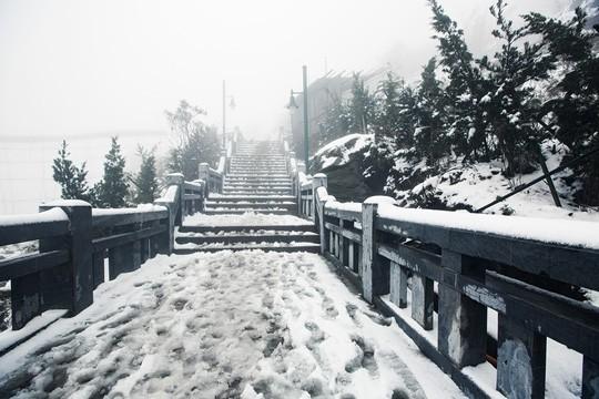 Những khoảnh khắc thiên nhiên vi diệu trên đỉnh Fansipan - Ảnh 3.