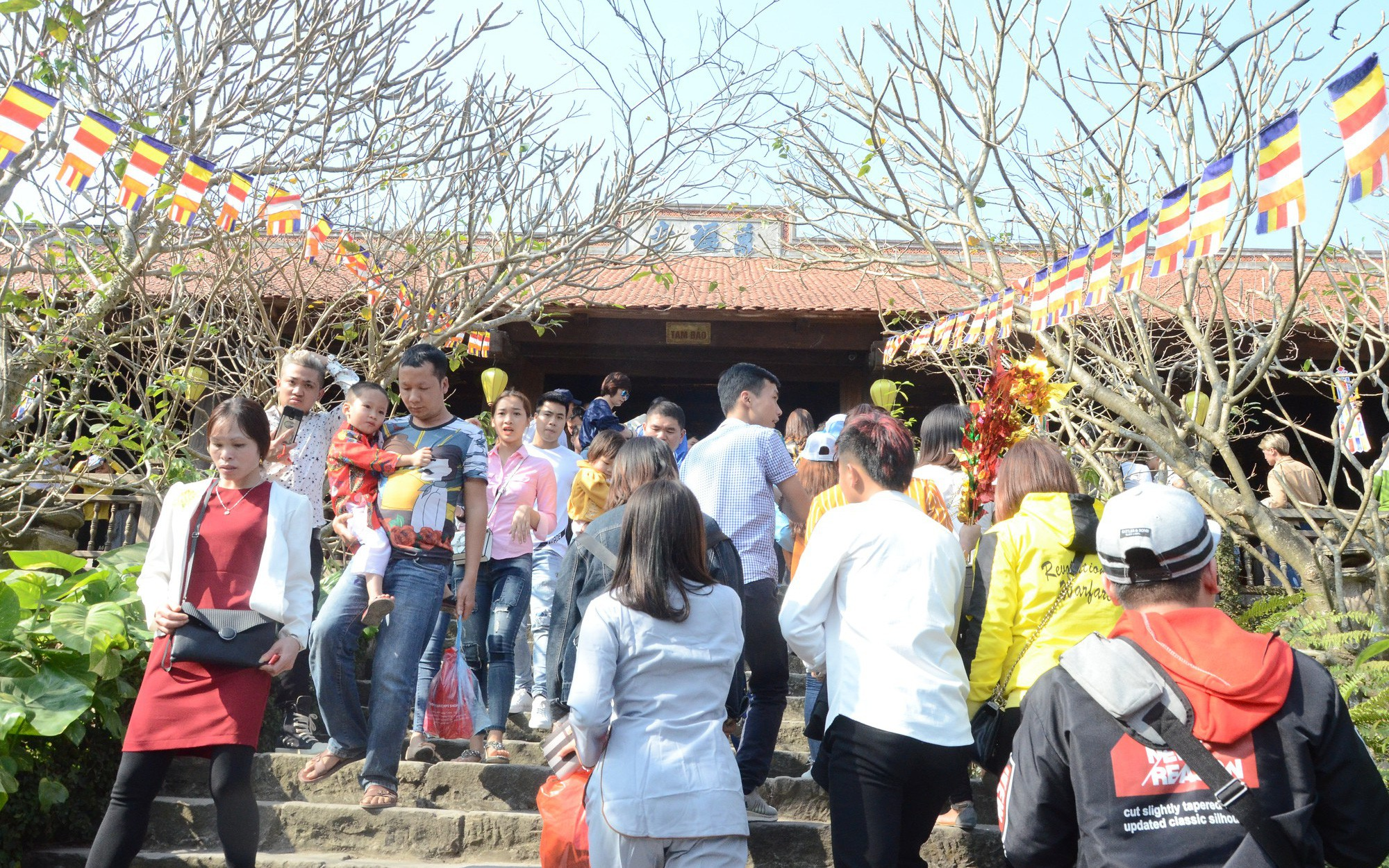 Khai hội Khán hoa mẫu đơn chùa Phật Tích