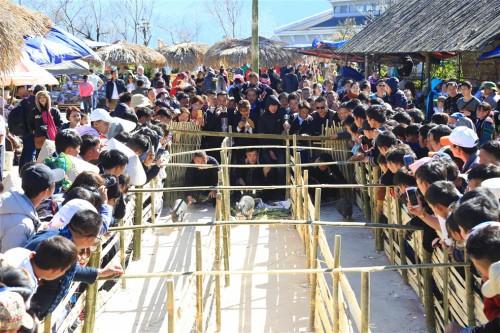 Du khách đổ về Fansipan trẩy Hội xuân và chiêm bái xá lợi Phật - Ảnh 6.
