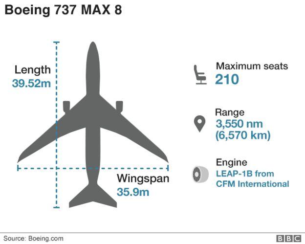 Giông bão bủa vây Boeing sau hai vụ rơi máy bay 737 Max 8 liên tiếp? - Ảnh 1.