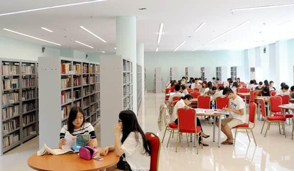Luật Thư viện ra đời sẽ góp phần chấn hưng văn hóa đọc tại Việt Nam - Ảnh 1.
