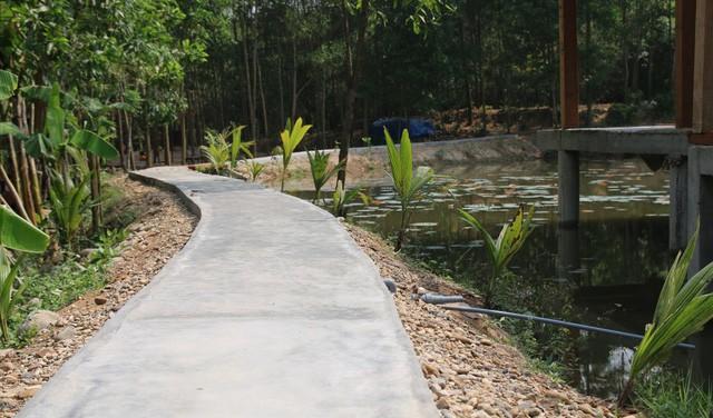 Tháo dỡ khu nghỉ dưỡng mọc trái phép giữa rừng phòng hộ: Cân nhắc tuyến đường bê tông và một số chòi tranh tre - Ảnh 2.