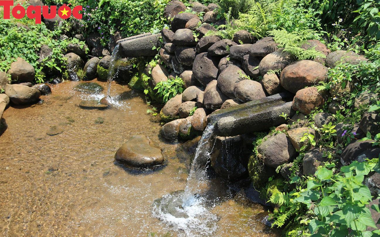 Quảng Trị nghiên cứu hình thành tour thăm giếng cổ Gio An và vườn sâm Bố Chính