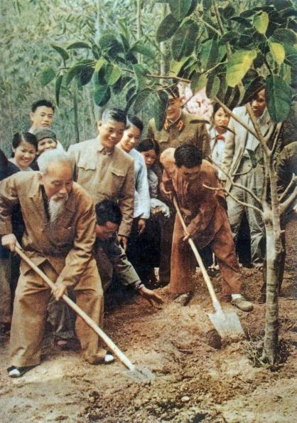 50 năm thực hiện Di chúc Hồ Chí Minh: Chỉnh đốn Đảng là việc làm tiên quyết và lâu dài - Ảnh 2.